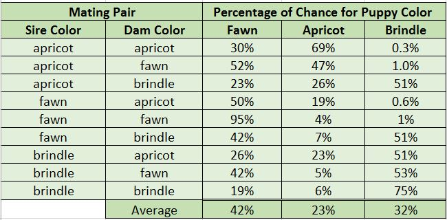 Coat Color in Mastiffs Probability