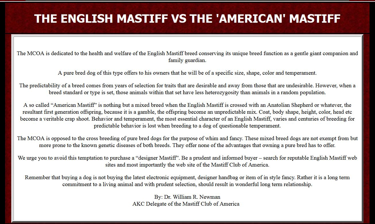 English Mastiff vs the American mastiff